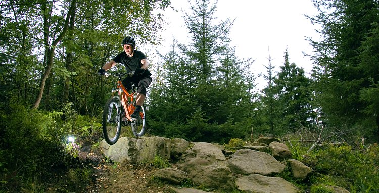 Biking in Dalby Forest