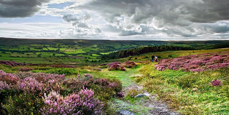 Attractions - North York Moors